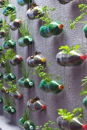 giardino interno riciclo bottiglie plastica